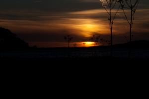 Sonneuntergang. Das ist übrigens ein Bild, das eher gegen Abend entstanden ist.