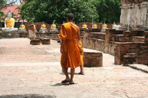 Junge Mönche.