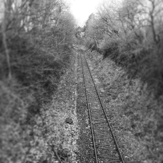Schienen in Lüneburg