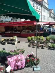 Markt in Uelzen