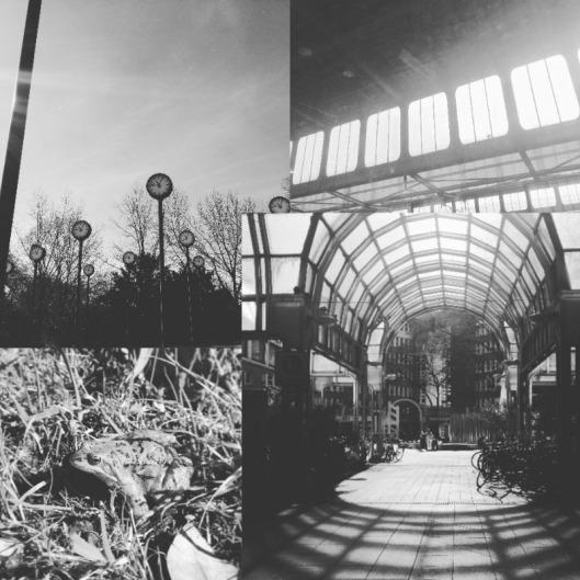 collage_duesseldorf
